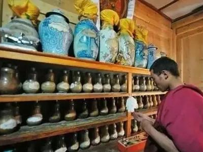 藏医医疗与藏药专业